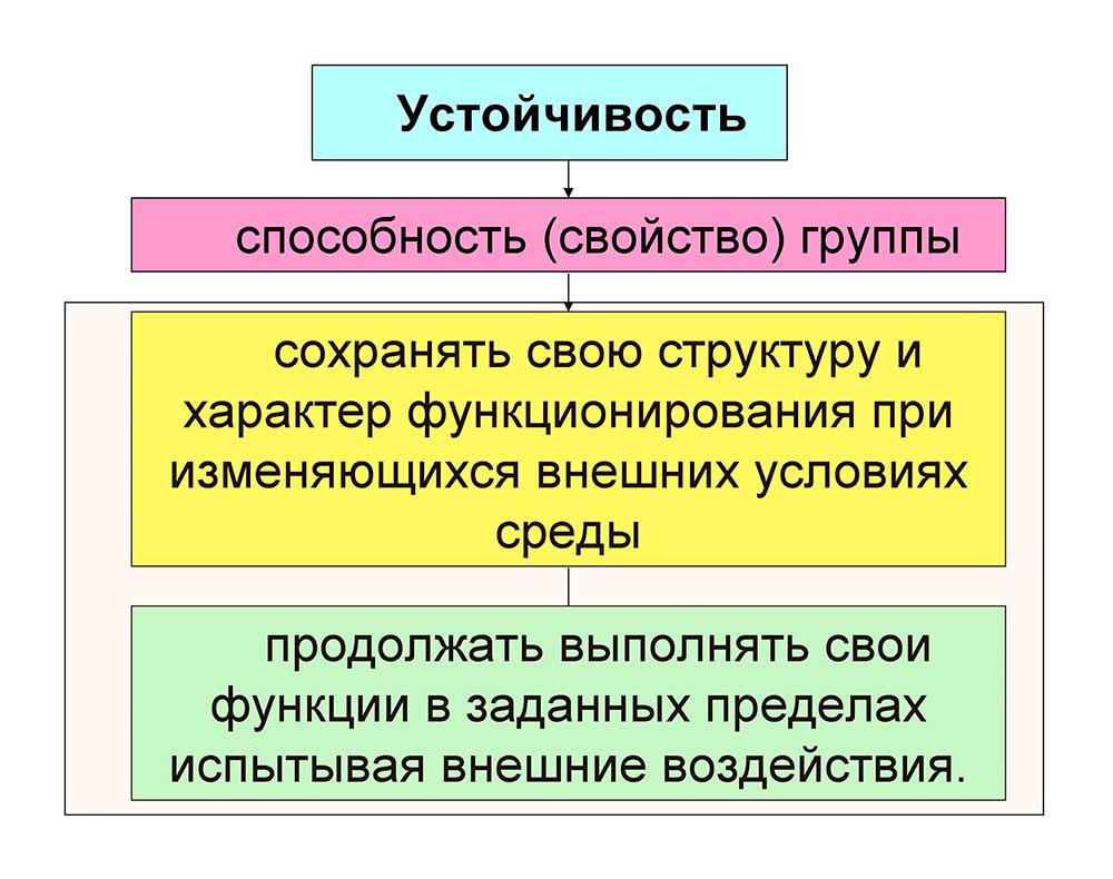 Устойчивость организованной группы